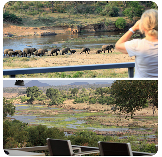 Black Rhino Reserve Shared Ownership